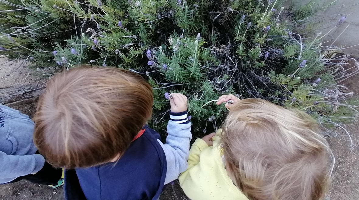 Nens i nenes de la llar infants municipal Els Pinyons Alella