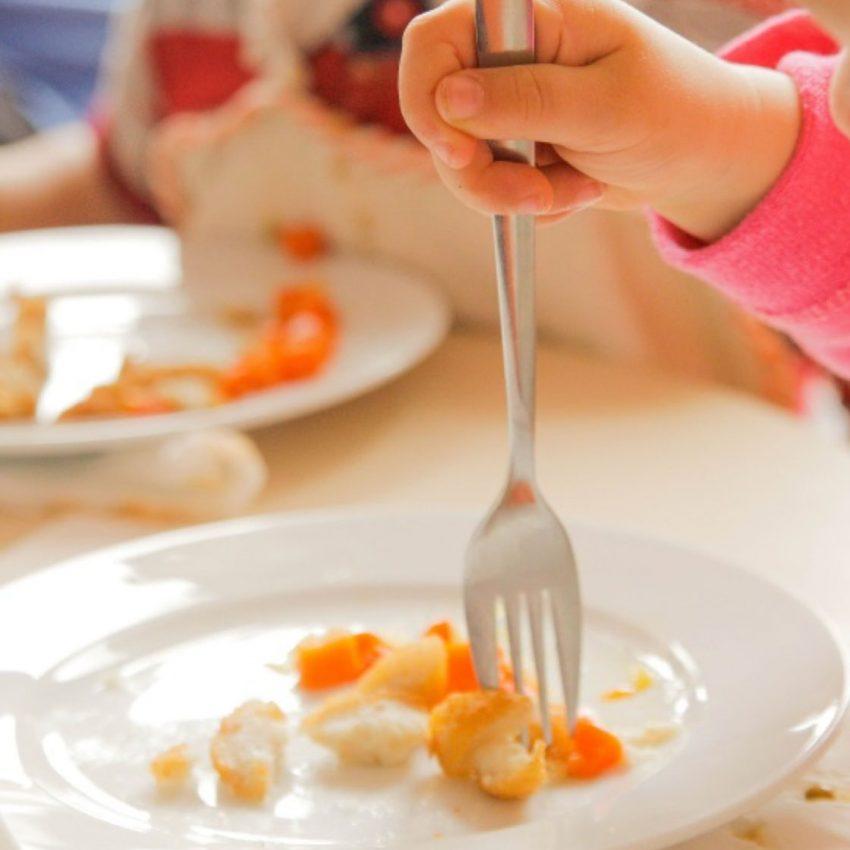 Gestió de menjadors escolars - Cavall de Cartró, escoles bressol