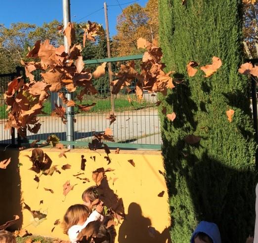 Tardor a jardí escola bressol Montflorit de Cerdanyola 6