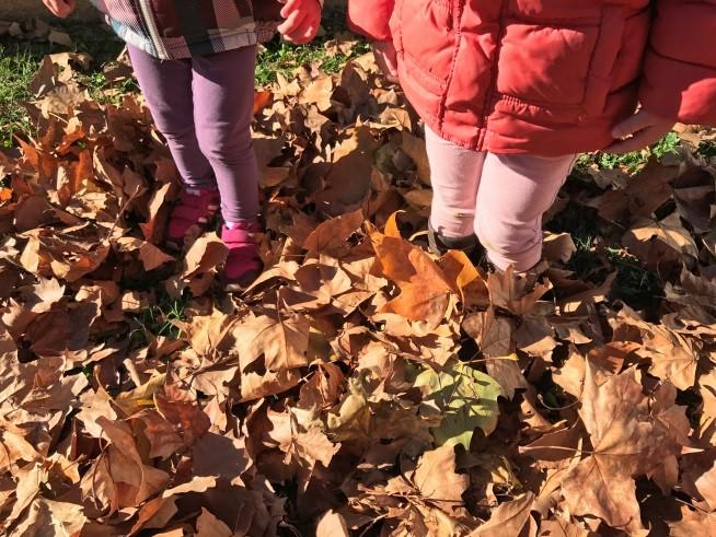 Tardor a jardí escola bressol Montflorit de Cerdanyola 7