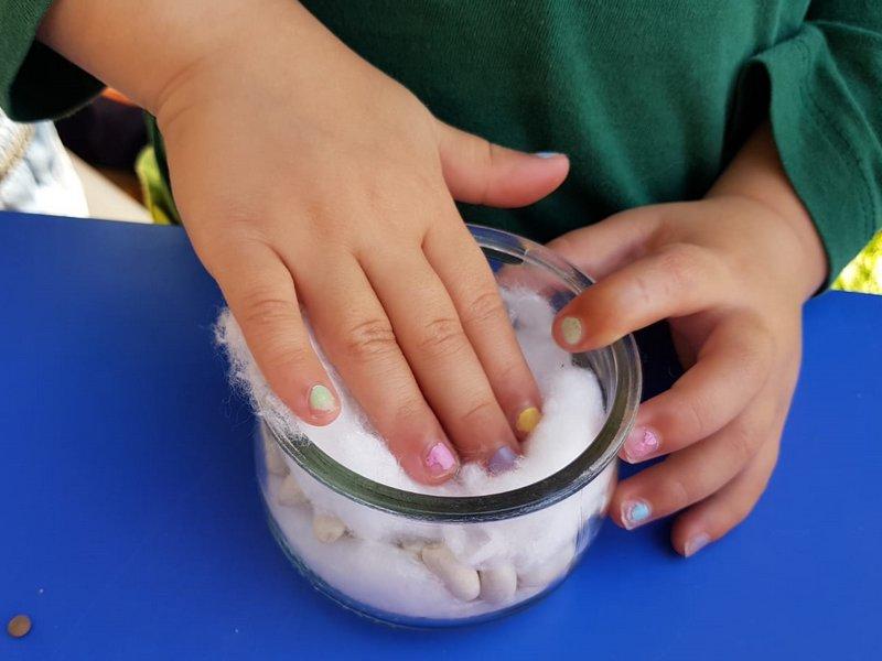 Experimentació a escoles bressol - plantem llenties