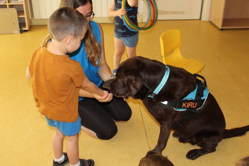 Teràpia acompanyament amb gossos EBM Gall Mullat de Piera 4